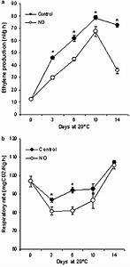 Evolution Of Ethylene Production  A  And Respiratory Rate