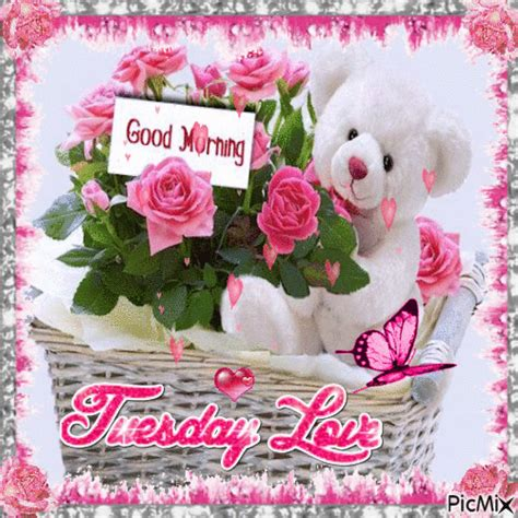 good morning tuesday love pictures   images
