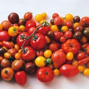 Tomaten In Der Wohnung : saisonkalender oktober f r obst und gem se k cheng tter ~ Lizthompson.info Haus und Dekorationen