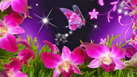 Just pinned to butterfly wallpaper: Beautiful Butterflies and Flowers Wallpapers - WallpaperSafari