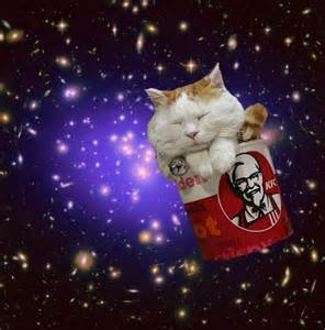 space cats cats in space caterville