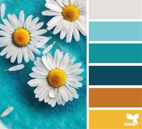 color seeds palette design seeds design paint palettes and