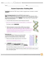 A nucleoside has two parts: Student Exploration Building Dna Answer Key Quizlet + My ...