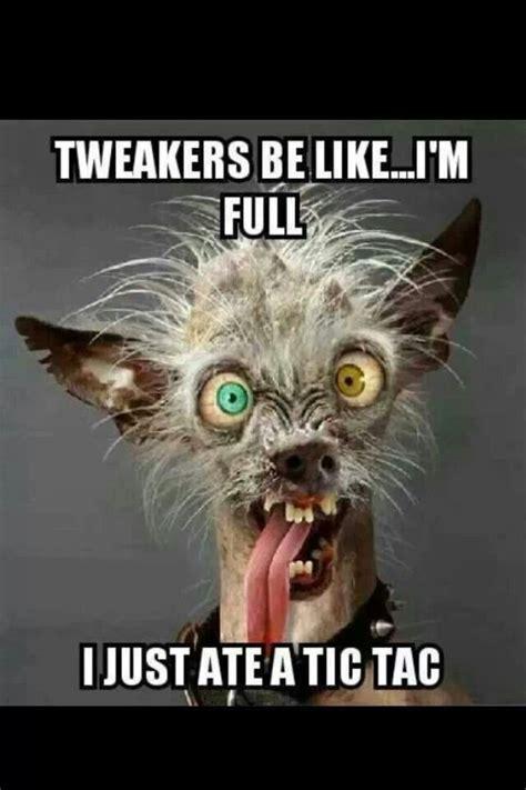 Tweaker Memes - funny meth tweaker quotes and images tweakers be like funny meth drug addiction recovery