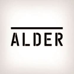 alder reviews home security companies  company