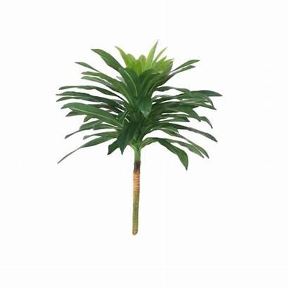 Dracena Planta Ornamental Permanente Silicone Artificial Tricolor
