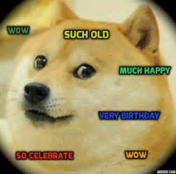 24 best images about much doge so funny wow on