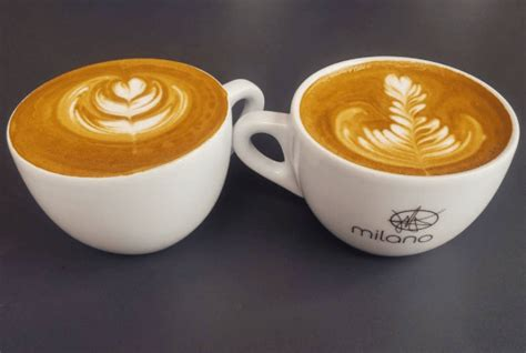 Milano coffee bàu cát gồm 2 tầng: The Best Coffee Roasters In Vancouver - 604 Now