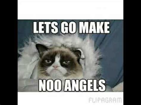 Grumpy Cat Meme Clean - funny cat pics clean impremedia net