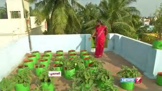 how to grow vegetables in a container or pots on the
