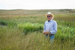Drought-Proofing Hay Ground