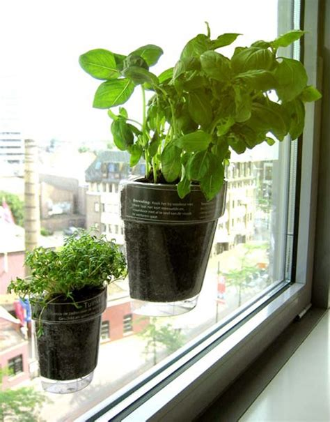 window herb garden modern systems to help your herb garden thrive in small spaces