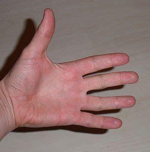 Middle Finger Images Middle Finger Wiktionary