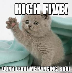 High Five Cat memes | quickmeme
