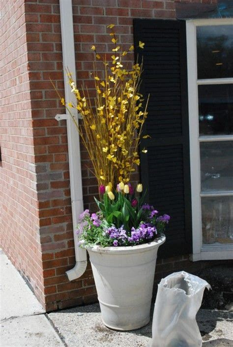 Best Images About Spring Containers Pinterest