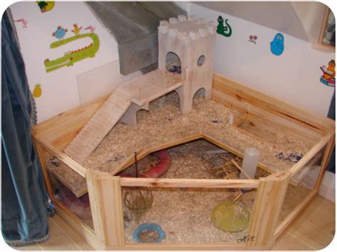 cage cochon d inde au royaume des elfes