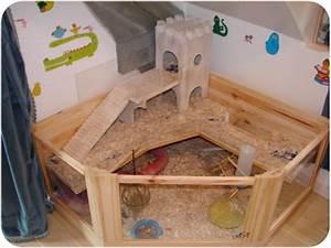 Cage A Cochon D Inde : cage cochon d inde au royaume des elfes ~ Dallasstarsshop.com Idées de Décoration