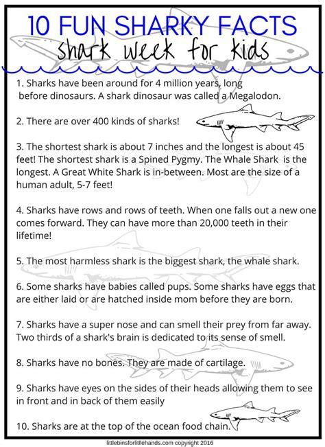 shark activities  preschoolers  bins