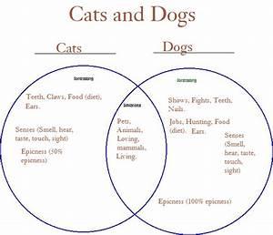 Cats  U0026 Dogs Ven Diagram