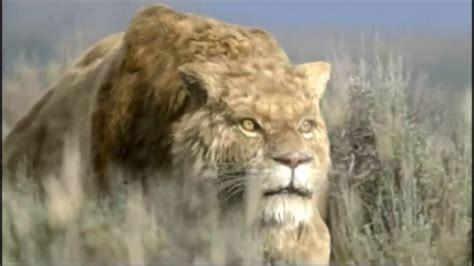 sabertooth assassin   ice age youtube