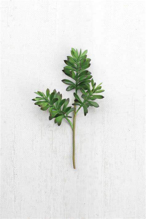 artificial cactus stem succulent