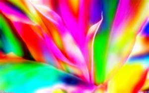 Cute Bright Colorful Backgrounds Wallpaper - WallpaperSafari