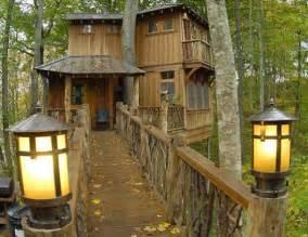 Cool Tree House Beautiful