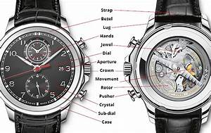 Diagram Of A Watch