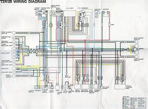 Tzr 4fl Wiring Diagram  In Colour  Think I Found It