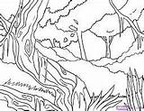 Jungle Coloring Rainforest Drawing Leech Drawings Simple sketch template