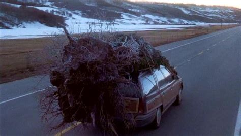 griswold christmas tree car a pilgrim in narnia