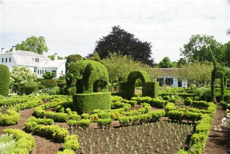 green animals topiary garden green animals topiary gardens portsmouth all you need to know before you go with photos