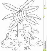 Banana Tree Coloring Climbing Drawing Printable Monkey Pages Getcolorings Getdrawings sketch template