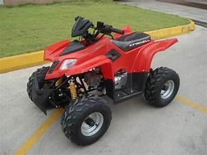 China 50cc To 110cc Atv  Kws7-q110