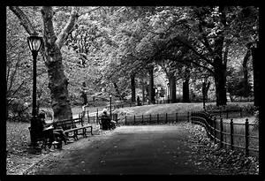 Central Park Black White Manhattan, New York