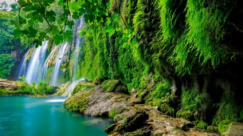 Wallpaper Tropical Forest, Waterfall, Hd, 4k, Nature, #6161
