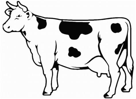 malvorlagen zum ausdrucken ausmalbilder kuh kostenlos