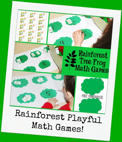rainforest tree frog math for preschoolers the 429 | Rainforest Tree Frog Math Games for Preschool