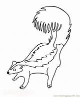 Skunk Coloring Pages Printable Skunks Cartoon Animals Template Pdf Coloringpages101 Elfa Books Templates sketch template
