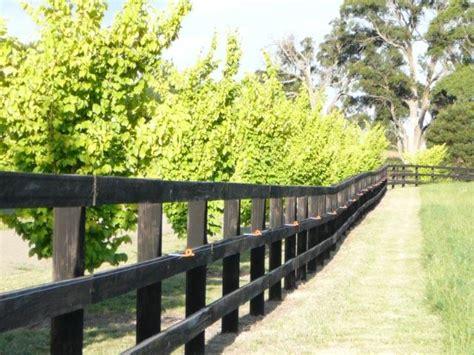 kentucky horse fence black creosote alternative