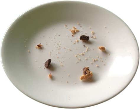 filechocolate chip cookie crumbs  platepng wikimedia