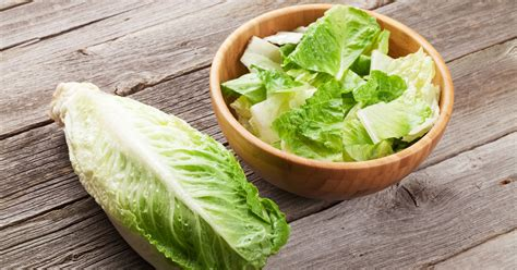 romaine lettuce  safe  serve