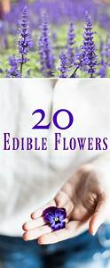 Top 20 Edible Flowers From Garden To Kitchen One