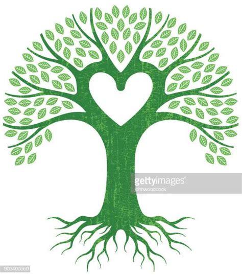 meilleurs arbre genealogique illustrations cliparts