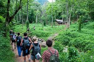 Jungle Trekking Tips - mekong