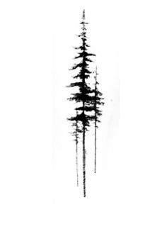 image result  pine tree tattoo designs pine eucalyptus tree tattoo designs tattoos