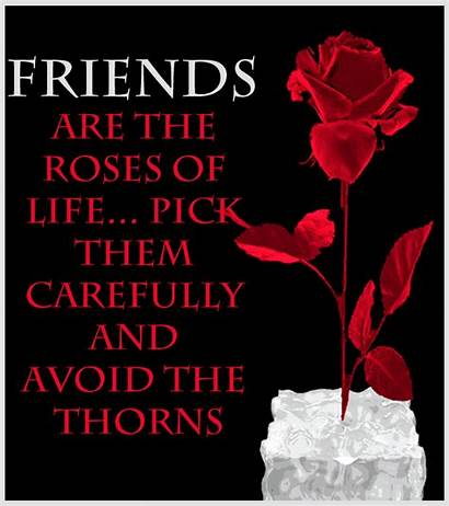 Roses Friendship Friends Animated Quote Rose Quotes