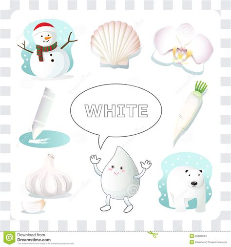 white is a color white color stock vector illustration of child seashell