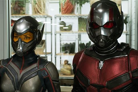 ant man   wasp cast  characters