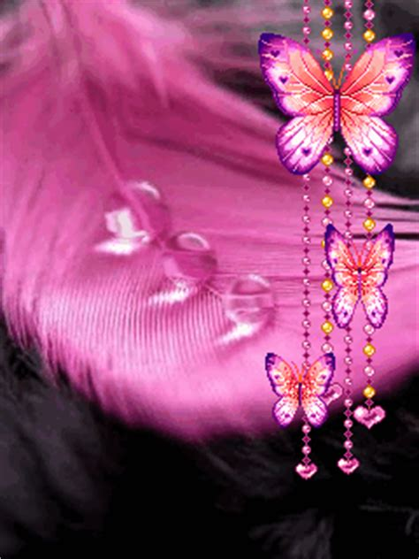Animated Butterfly Wallpaper Gif - animated butterfly gif animated butterfly and drops